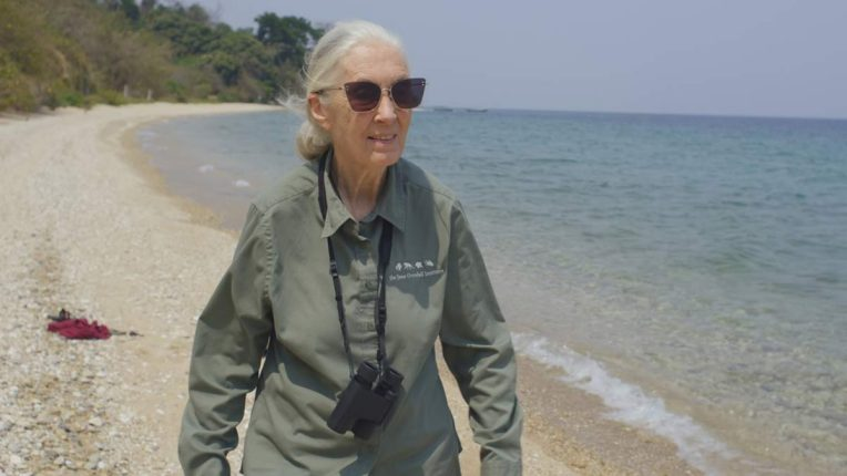 Doctor Jane Goodall in The Hope